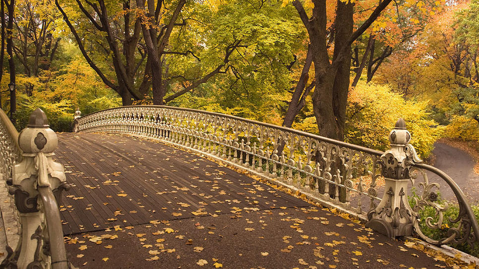 Central Park In Fall Wallpaper Trucks And Red Barns Central Park Perks