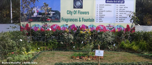 Noida Diary: Garden Display by Greater Noida Authority