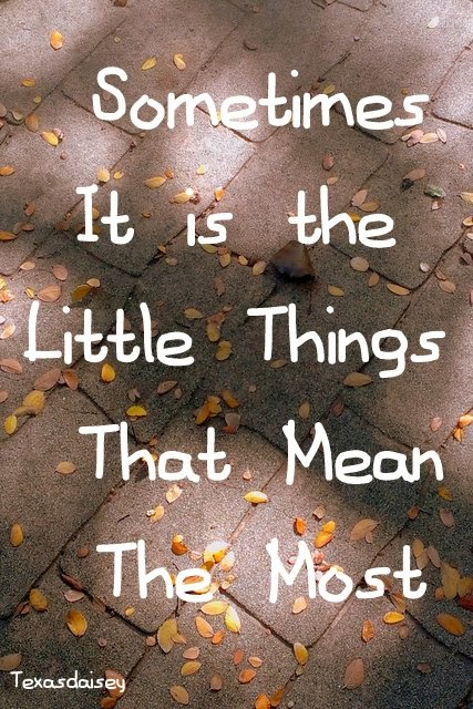 Sometimes it is the little things that matter most by Texasdaisey