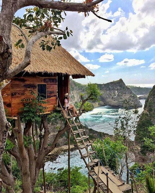 Tempat Wisata Hits di Bali yaitu Rumah Pohon Molenteng