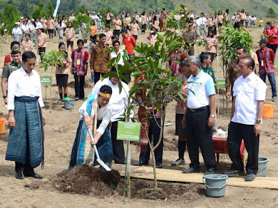 Ibu Negara Menanam pohon di Kebun Raya Samosir diperhatikan Pak Presiden Joko widodo