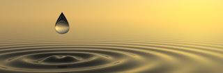 Poesía (como el zen): entre los límites de la razón y los confines del lenguaje, Francisco Acuyo