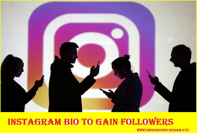 Instagram Bio to Gain Followers