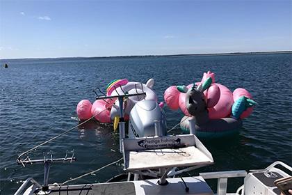 В Австралии школьниц, делавших селфи унесло в море