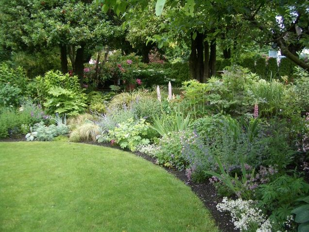 landscaping back yard gardening ideas