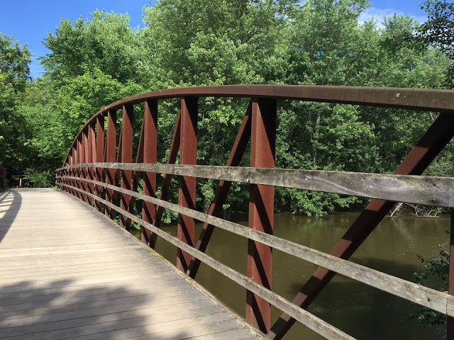 Foot bridge over the Des Plaines River at Captain Daniel Wright Woods