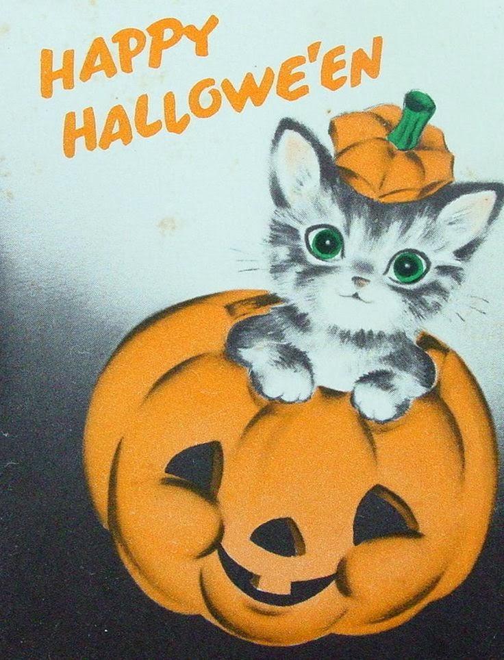 sch ne bilderseiten im internet halloweenbilder noch ein paar sch ne halloweenbilder kostenlos. Black Bedroom Furniture Sets. Home Design Ideas