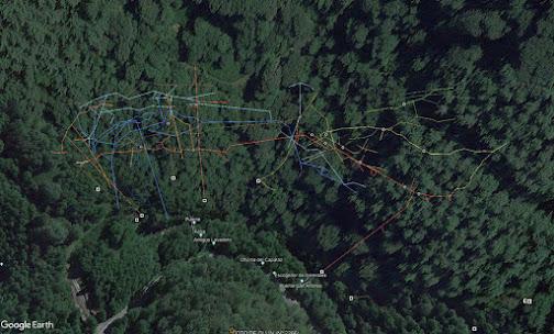 Clic para abrir en Google Earth