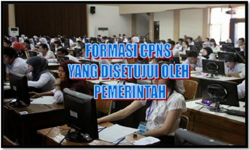 Formasi CPNS Yang Disetujui Bapak Presiden Jokowi Terbaru