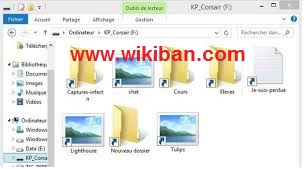 How to remove shortcut virus with comman prompt