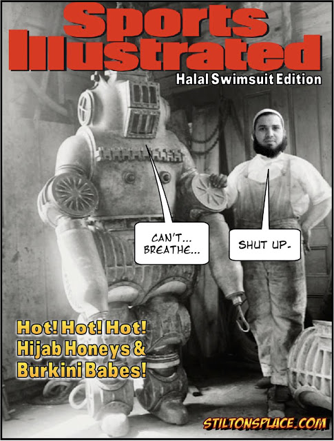 stilton's place, stilton, political, humor, conservative, cartoons, jokes, hope n' change, sports illustrated, pilot, burkini, hijab, swimsuit edition