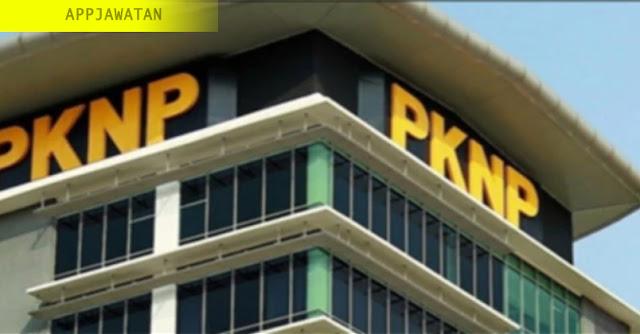 Perbadanan Kemajuan Negeri Perak (PKNP)