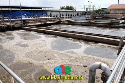 Bể xử lý nước thải sinh học đang hoạt động