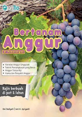 Buku Bertanam Anggur di Pekarangan