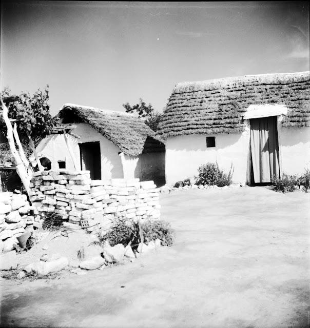 Amposta (Tarragona).