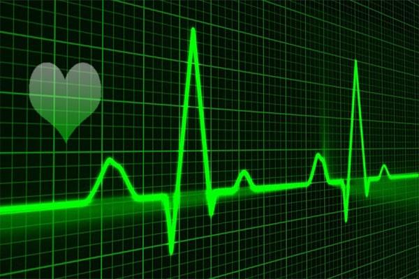 факты про сердце. биение сердца