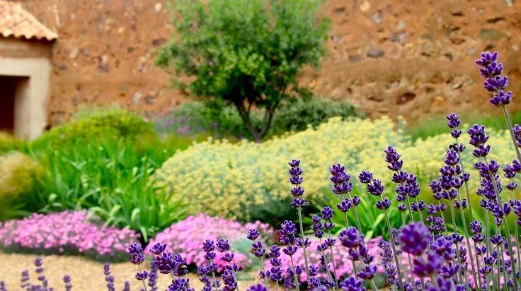 Jardin con plantas mediterráneas y gramineas en Toledo Miguel Urquijo