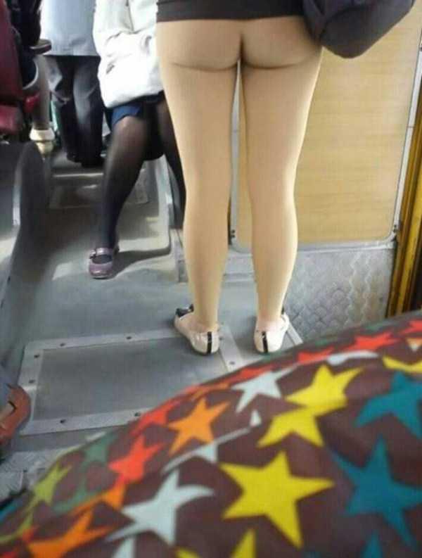 10 porquitchonas em transportes públicos