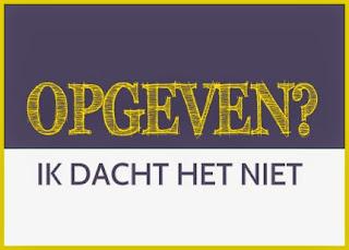 SpiegelRuimte, Hillie Snoeijer, Psycholoog Groningen Baflo