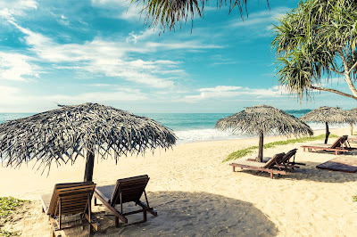 Liable Florida Beach Injury Dolman Law Group