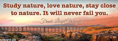 quotes bahasa inggris tentang alam dan artinya