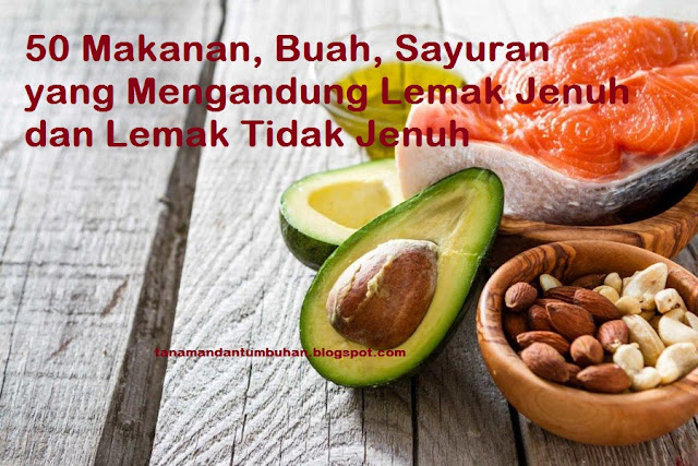 Makanan, Buah, Sayuran yang Mengandung Lemak