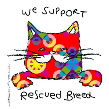 Supporting Rescue Kitties