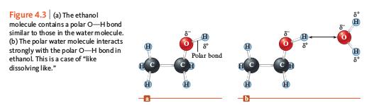 Proses Larutnya Etanol di Air