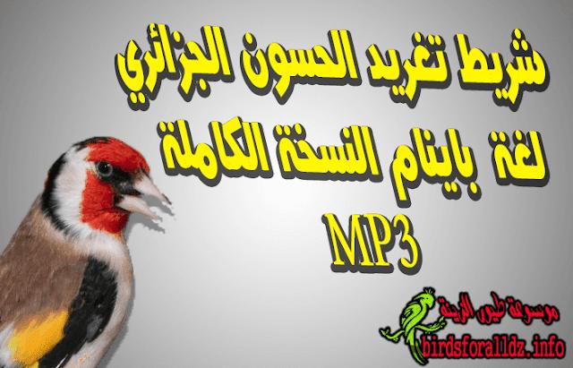 تحميل تغريد الحسون الجزائري لغة باينام  mp3