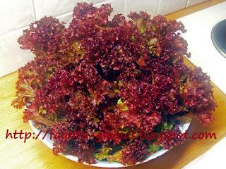 Σαλάτα κόκκινη λόλα με ντομάτα - από «Τα φαγητά της γιαγιάς»