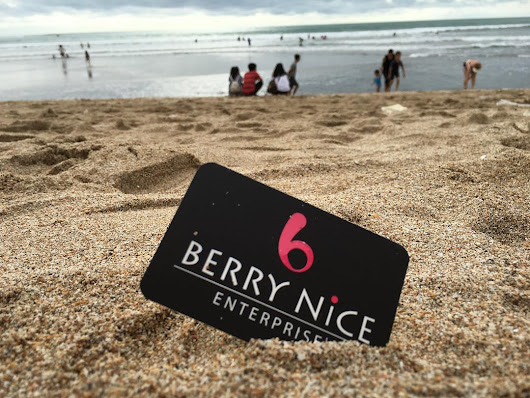 Review : Berry Nice Enterprise | Start Repairing With Us
