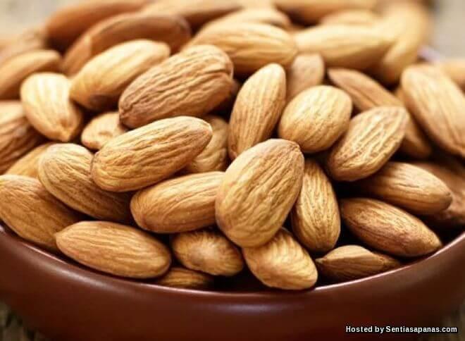 Khasiat Badam Untuk Kolesterol