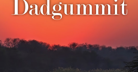 Cover Reveal for Dadgummit