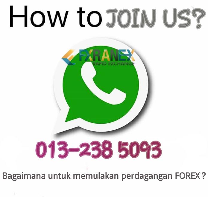 Forex bagaimana berdagang berjerawat