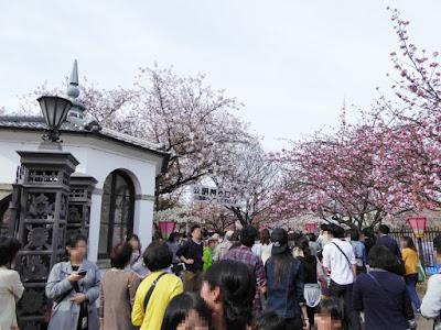 大阪造幣局 桜の通り抜け 旧正門
