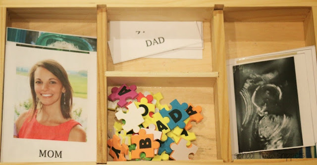Family 3 Part Montessori Cards