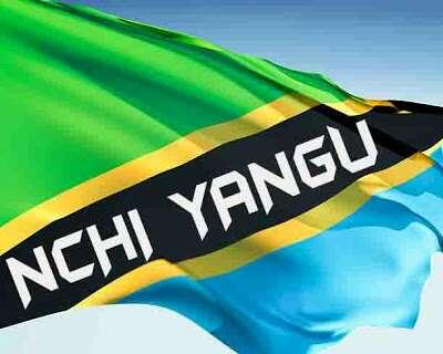 Download Mp3 | Tanzania Artists - Nchi Yangu