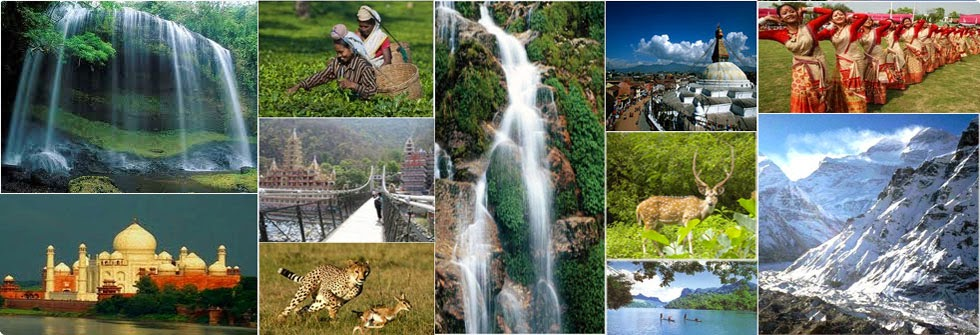 Image result for ECOTOURISM PICTURE IN COLLAGE
