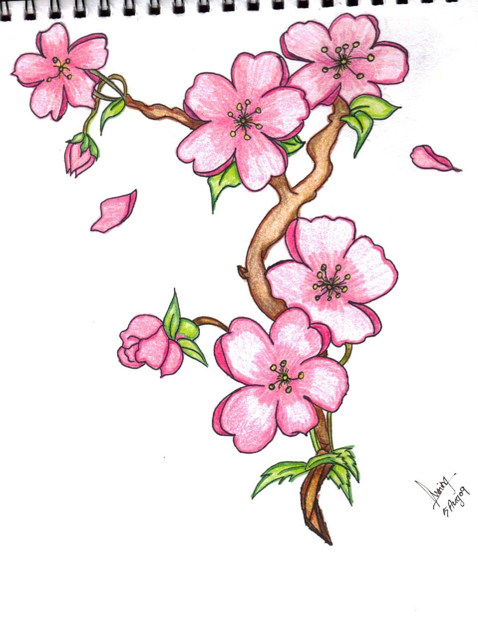 Easy Flower Pictures To Draw - Beautiful Flowers