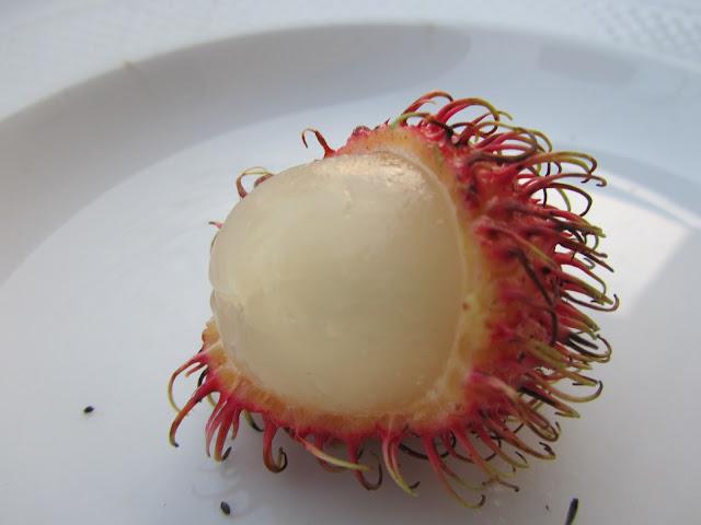Frutto Rambutan