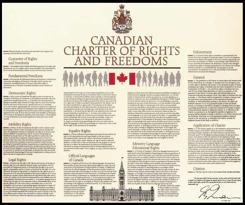 article 8 involving the charter involving rights for canada