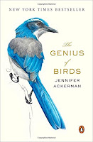 https://www.amazon.com/Genius-Birds-Jennifer-Ackerman/dp/0399563121/ref=sr_1_1_twi_pap_1?s=books&ie=UTF8&qid=1501449324&sr=1-1&keywords=the+genius+of+birds