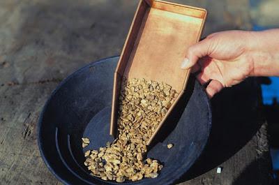 Como garimpar ouro na natureza