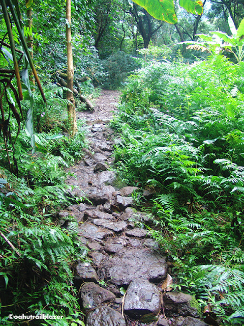 hiking Oahu Hawaii