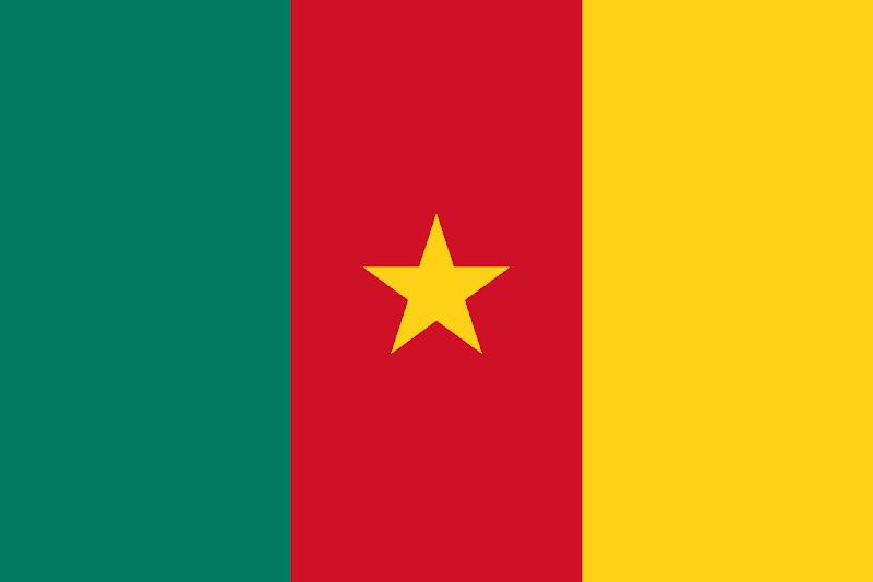 Logo Gambar Bendera Negara Kamerun PNG JPG ukuran 800 px
