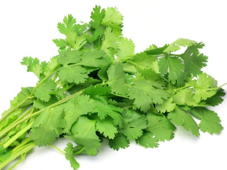 Health benefits of cilantro leaves (coriander)
