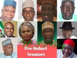 Ten pro-Buhari APC senators may go on 1 year suspension - Senate
