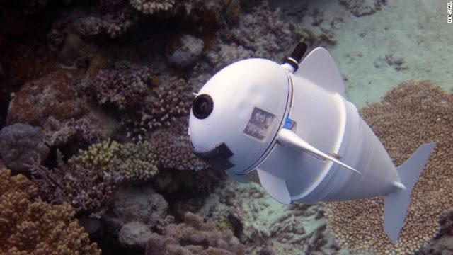 tecnologia robot sofi que puede imitar los movimietos de un pez real.