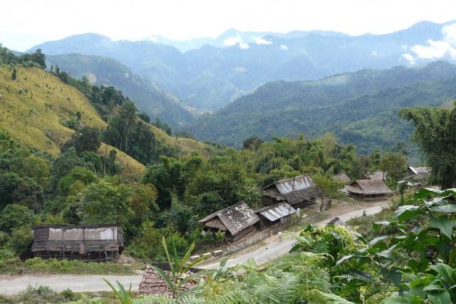Forests of Arunachal