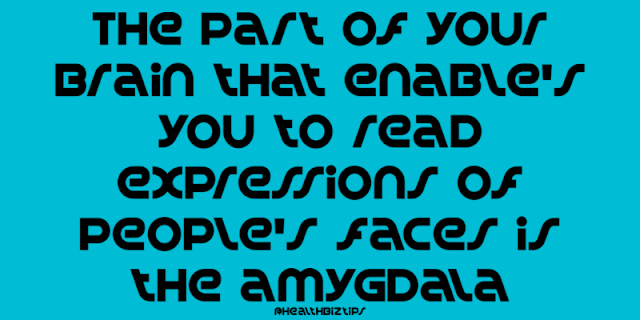 10 Health Facts & Tips: The part of your brain that enable's you to read expressions of people's faces is the amygdala.